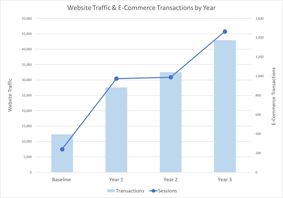 Ceiling Outfitters eCommerce website traffic results